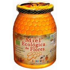 Apinatura - Miel Ecologica de Flores Bio-Blütenhonig 1kg Glas produziert auf Gran Canaria