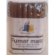 Canaritos - Miguelitos Puros 50 Stück Zigarren produziert auf Teneriffa