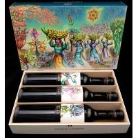 Tajinaste LightfulCanarias CAN Paisajes de las Islas Edicion Especial Jardin de Las Hesperides Vino Tinto Rotwein 3x 500ml produziert auf Teneriffa